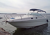 Begagnad Sea Ray 260 Sundancer